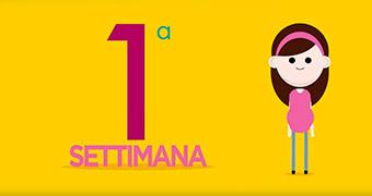 Calendario Delle Settimane Di Gravidanza.Speciale Gravidanza Pampers It