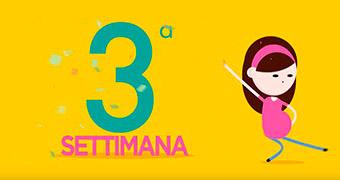 Calendario Settimane Gravidanza Calcolo.Speciale Gravidanza Pampers It